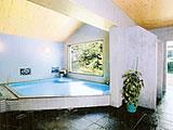 長野県 御代田 軽井沢 小諸 民芸の宿 天狗の茶屋の浴場・龍泉の湯